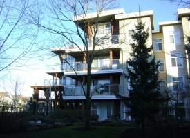 5700 Andrews Exterior wood staining, Richmond