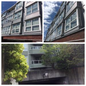 2891 E Hastings, Vancouver Strata Repaint